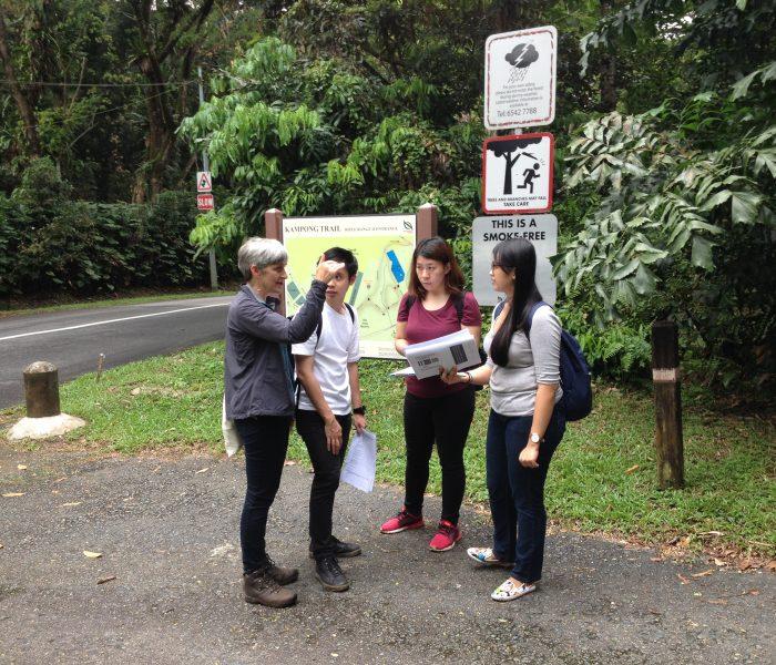 Jo Kampung trail